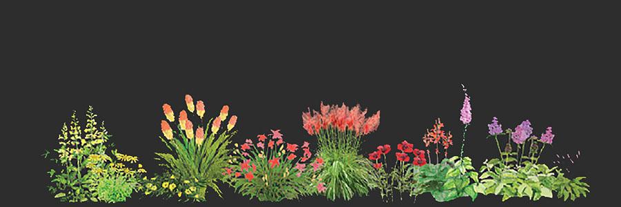 Swoboda tworzenia projektów ogrodów i terenów zielonych