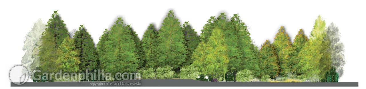 professional software to design and visualize gardens and greenery