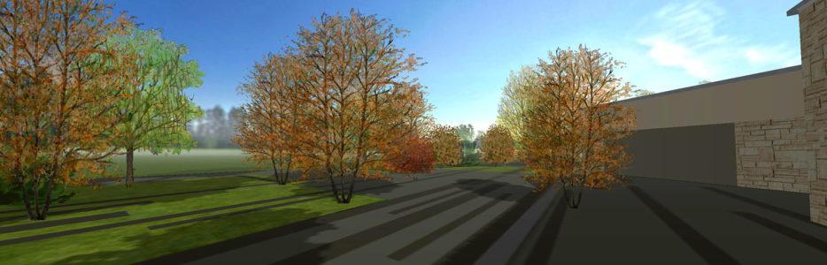 Wyjątkowe zmiany sezonowe roślin